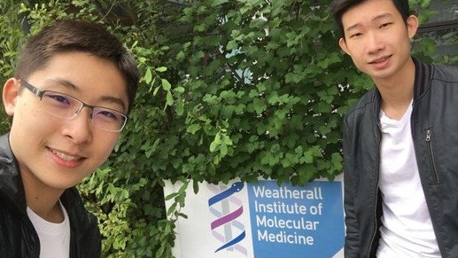MRC Molecular Haematology Unit, the Weatherall Institute of Molecular Medicine, University of Oxford