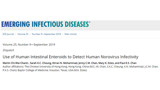 Detecting infectious norovirus by new culture system