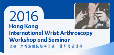 Hong Kong International Wrist Arthroscopy Workshop and Seminar