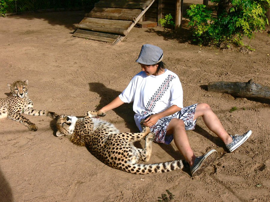 Duma, the cheetah orphan in Namibia, inspired Dr. LIYEUNG to create a cartoon character.