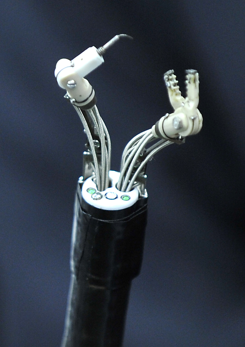 The newly designed delicate robotic arms attached to the ordinary endoscope can facilitate the performance of complex endoscopic surgery by extending the degree of movement through the two robotic arms