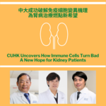 CUHK Uncovers How Immune Cells Turn Bad A New Hope for Kidney Patients