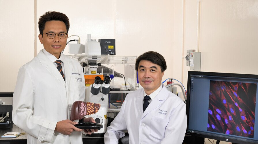 "CUHK Uncovers a New Strategy to Turn ""Cold"" Liver Tumour ""Hot"" Leading to an Effective and Durable Combined Immunotherapy"