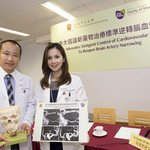CUHK Advocates Stringent Control of Cardiovascular Risks for Reopening of Narrowed Brain Arteries - A New Paradigm to Prevent Recurrent Stroke (Available in Chinese only)