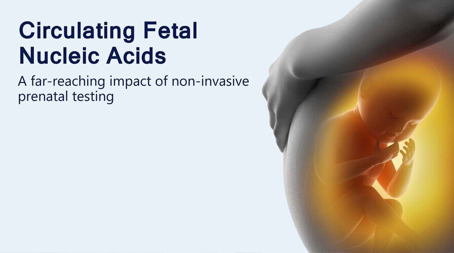Research Flagship: Circulating Fetal Nucleic Acids
