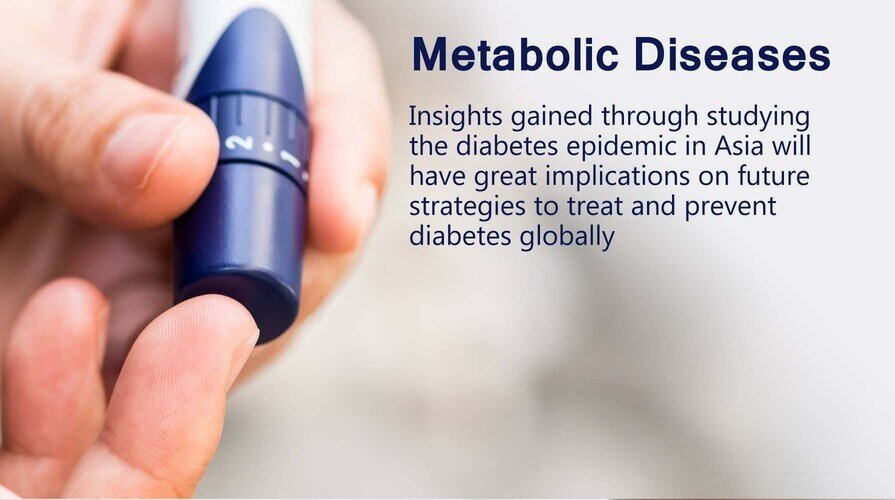 Research Flagship: Metabolic Diseases